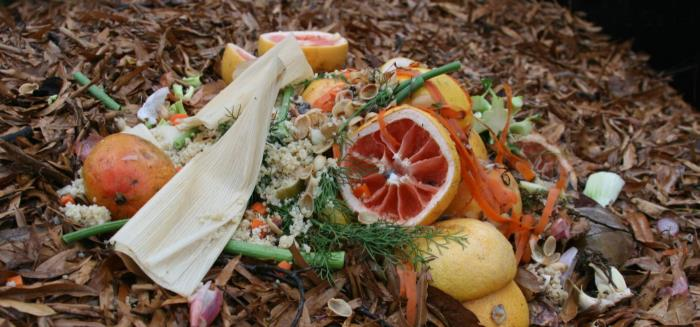 """Featured image for """"Compost Bin Stewardship"""""""