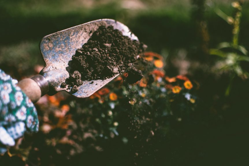 trowel with dirt