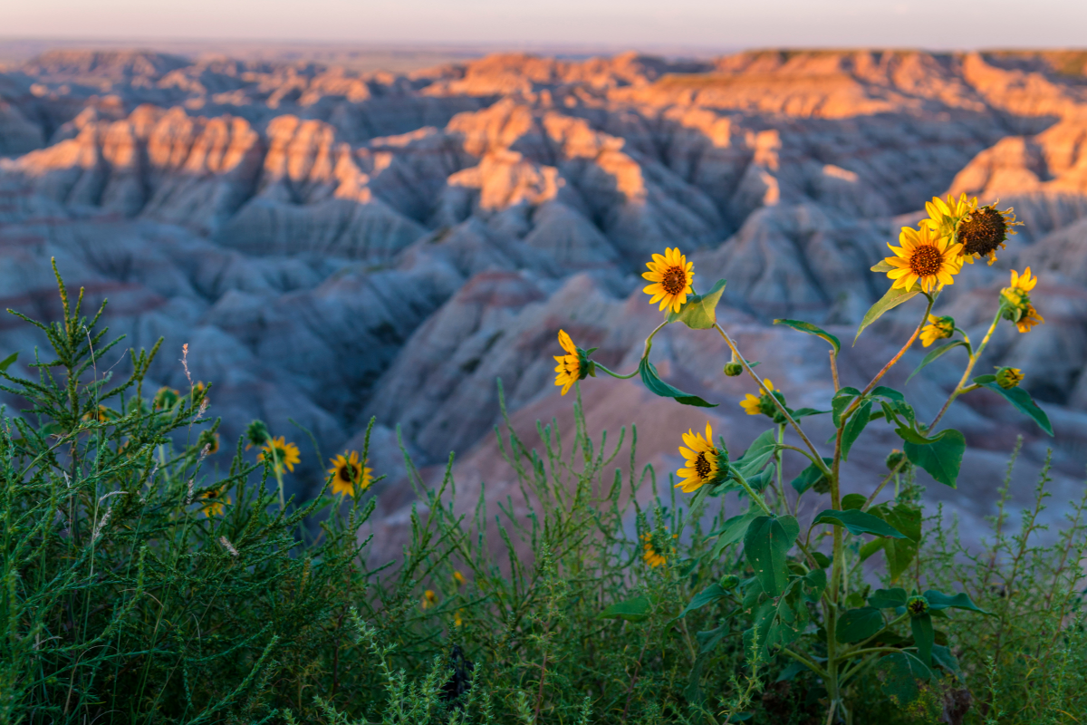 "Featured image for ""Finding Abundance in the Badlands: Collaboration in Worship and Community"""